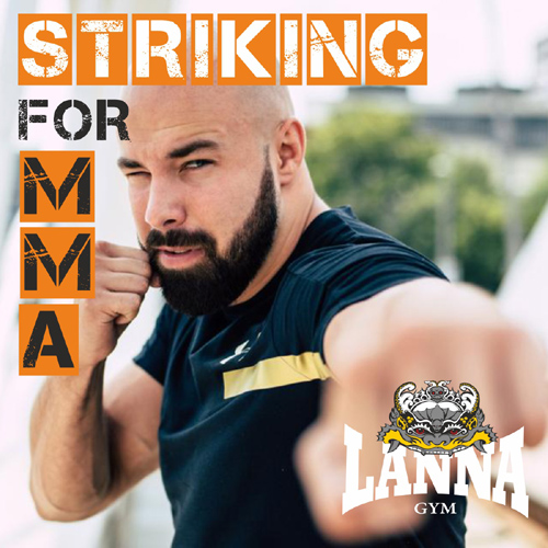Striking for MMA